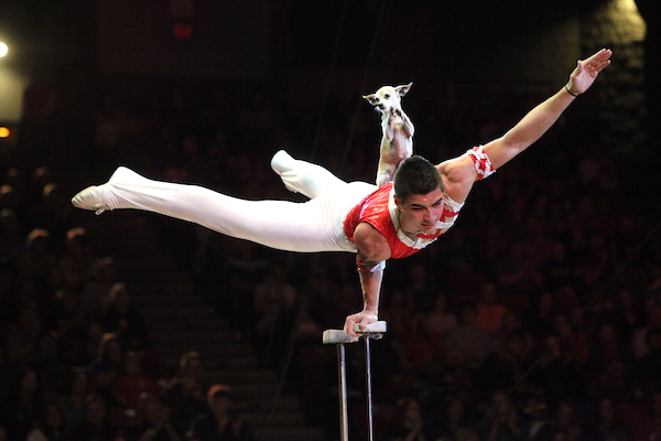 christian-stoinev_-photo-credit_lonestarcircus