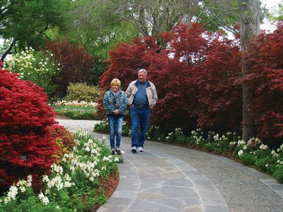Dallas ArboretumDallas Arboretum Couple on PathFloral Path