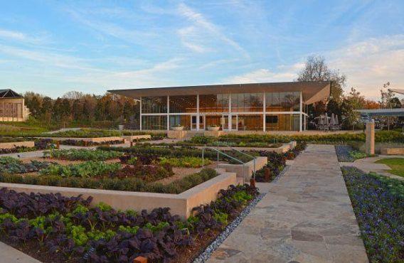 Dallas Arboretum Dining Terrace